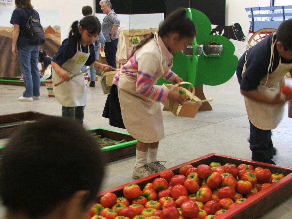 Farm to Fork - Kids picking apples